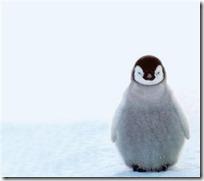ペンギンアップデート3.0が実施!