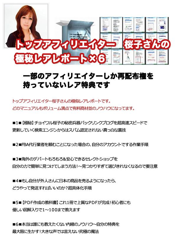 トップアフィリエイター桜子さんの極秘レアレポート
